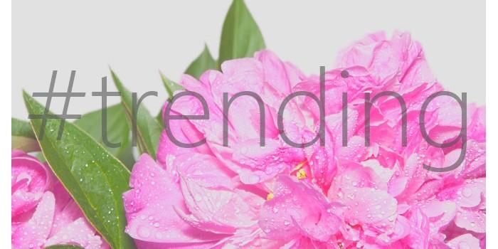 #trending: Springtime Color Palette